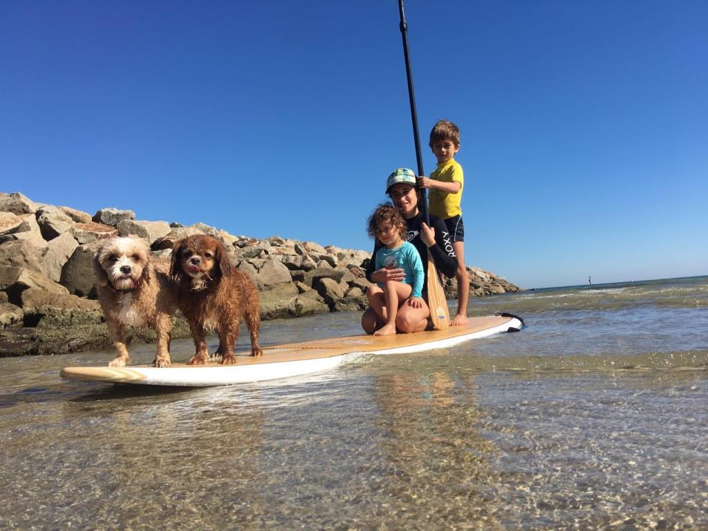 Dogs On Frankston Beach